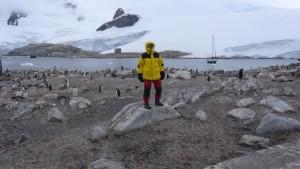 antarktis-pinguine-galerie-20