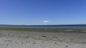 argentina_puerto_madryn-strandimpression-008