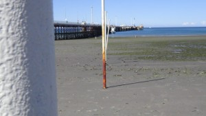 argentina_puerto_madryn-strandimpression-009