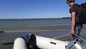 argentina_puerto_madryn-strandimpression-015